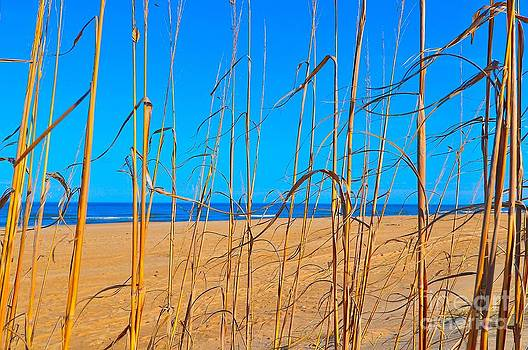 Beach by Eric Grissom