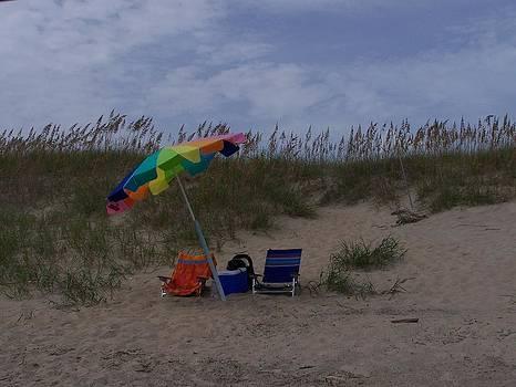 Beach Life 2 by Jeff Moose