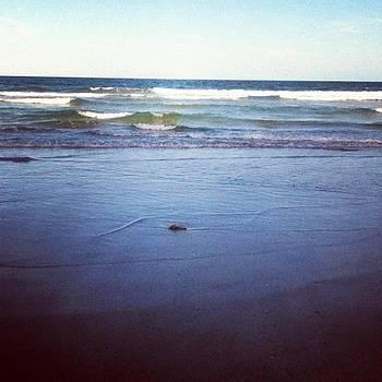 Beach by Melissa Cabigao