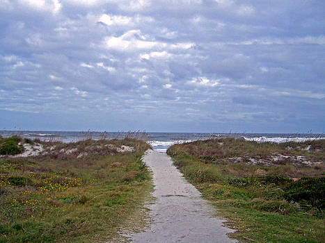 Patricia Taylor - Beach Pathway