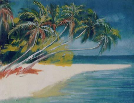 Beachside by Stephen Achugwo