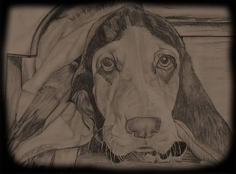 Beagle by Leeann Stumpf