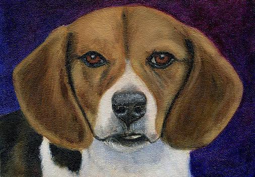 Michelle Wrighton - Beagle Puppy