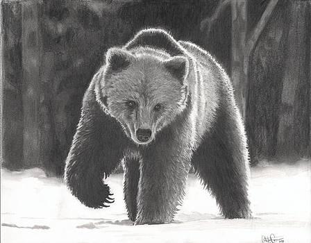 Christian Conner - Bear Necessities