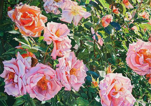 Beauties by Kathleen Ballard