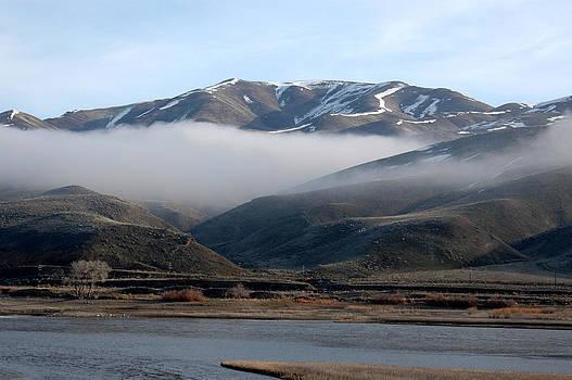 Beautiful Foggy Day by Wanda Jesfield