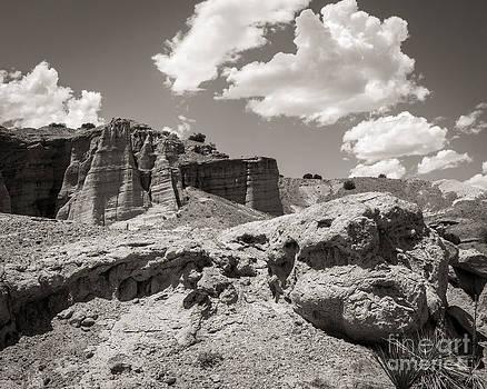 Beautiful New Mexico by Sherry Davis