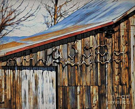 Beautiful Old Barn with Horns by Phyllis Kaltenbach