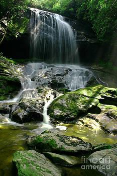 Beautiful Rain Forest Waterfall by Matt Tilghman