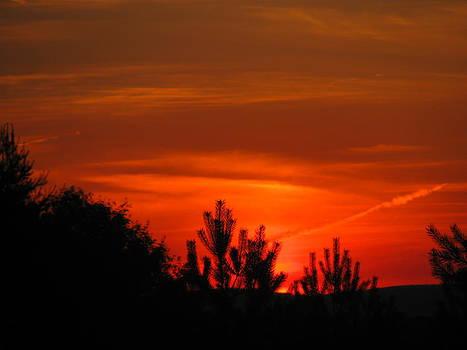 Tammy Bullard - Beautiful Sky