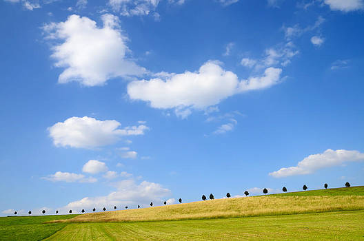 Beautiful summer landscape with blue sky and clouds by Matthias Hauser