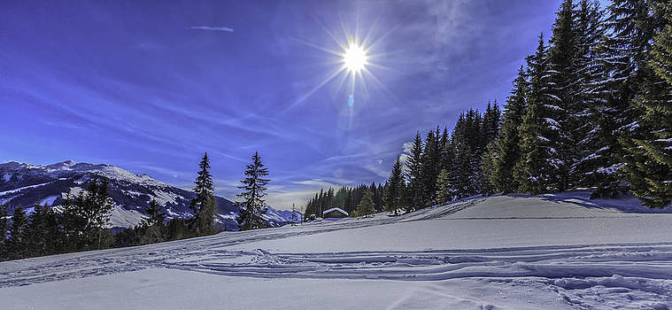 Beautiful winter at sunlight by Valerii Tkachenko