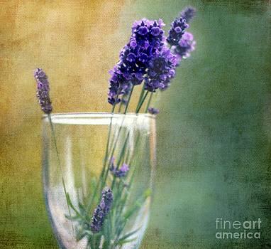 Beauty by Anne Seltmann