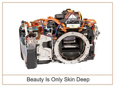 Beauty Is Only Skin Deep by Max Blinkhorn