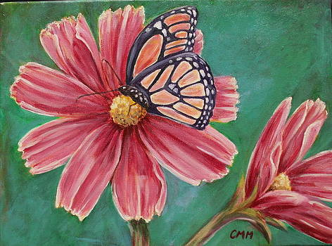 Beauty on Cosmos by Colleen Masserang