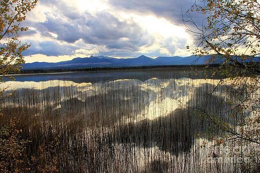 Roland Stanke - beaverdam lake