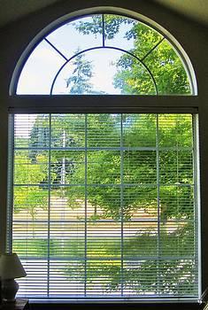 Bedroom Window by Ami Tirana