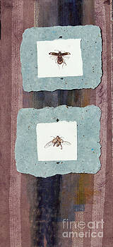 Beetles by Sarah Mushong