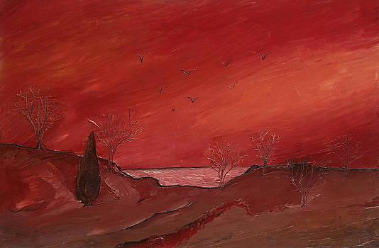 Before Sunset by Yaron Ari