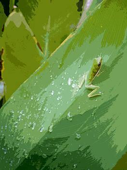 Lynn Palmer - Bejeweled Green Frog