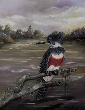 Belted Kingfisher by Laura Brown