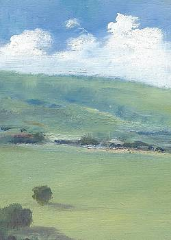 Bembridge Down in Early Summer by Alan Daysh