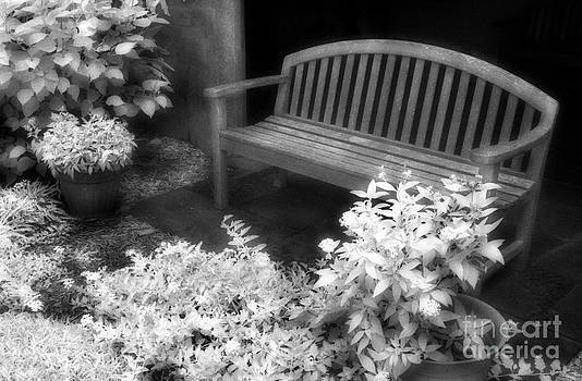Jeff Holbrook - Bench and Flowers