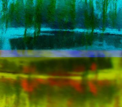 Beneath the Pond by Lori Kirstein