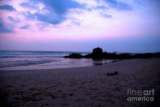 Pravine Chester - Bentota Beach