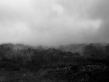Bergen Hills by Aref Nammari