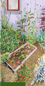 Berkeley Garden #1 by Joanna  Katz
