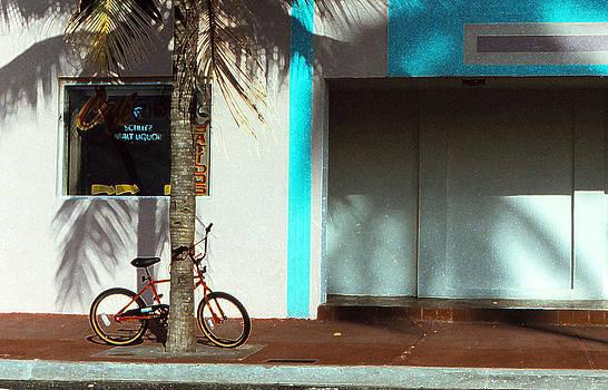 Bicycle  by Bob Whitt