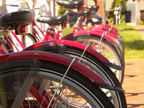 Bicycles by Robert Decker