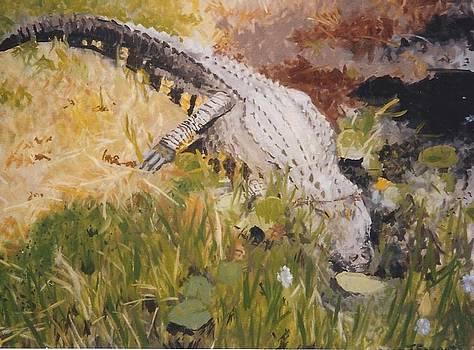 Big Alligator by Terry Forrest