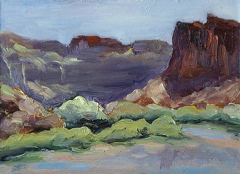 Big Bend Canyon Colorado River Moab Utah by Zanobia Shalks
