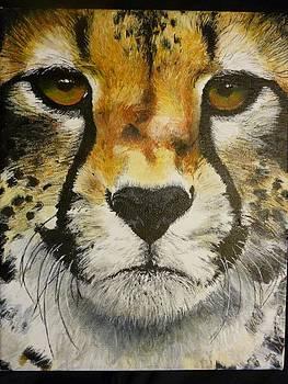 Big Cat Eyes Original Oil Painting 8 x 10 on Wrapped Canvas Provide Picture by Shannon Ivins