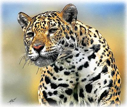 Big Cat by Tom Schmidt