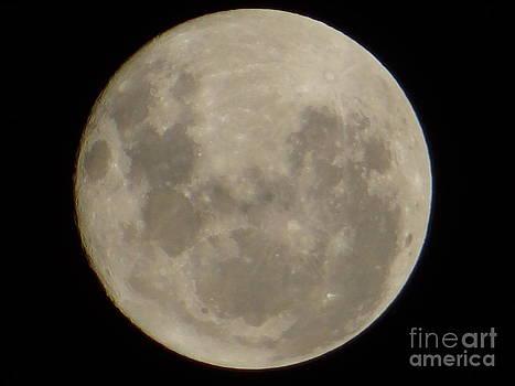 Big Moon by Nicoli Do Prado