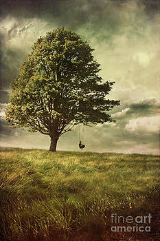 Sandra Cunningham - Big tree with young boy on tire swing