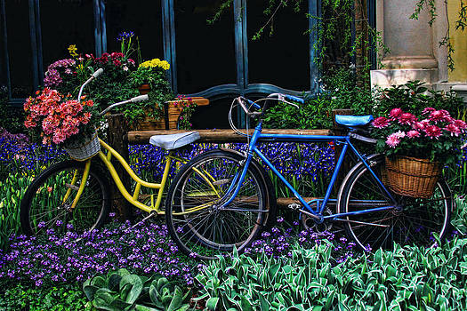 Bike ride by Tammy Espino