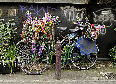 Bikes as Art by Ed Rooney