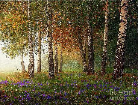 Birch Meadow by Robert Foster