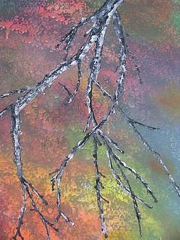 Birch Tree Branch by Donna Jeanne  Carver