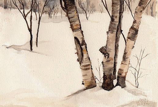 Birch Trees In the Snow by Barb Kirpluk