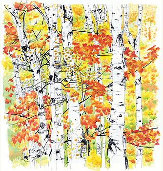 Birches 2 Radiance by Bernadette Kazmarski
