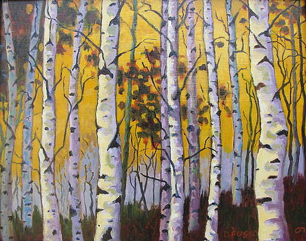 Birches by Dan Fusco