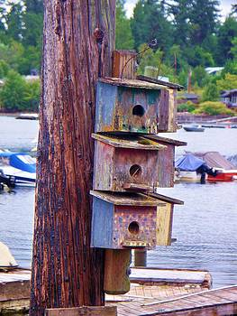 Bird house by the bay. by Marilyn Lyon