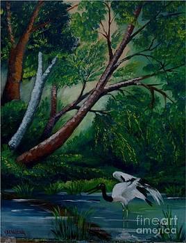 Bird in the swamp by Jean Pierre Bergoeing