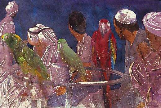 Bird Market Sharjah by Martin Giesen