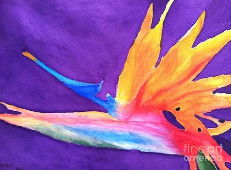 Bird of Paradise by Bonnie Wright